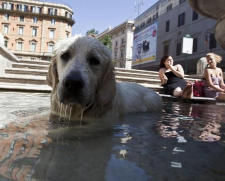 erg heet in tutta Italia!