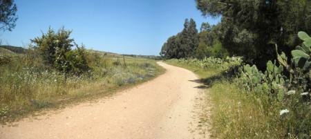 strada-di-campagna
